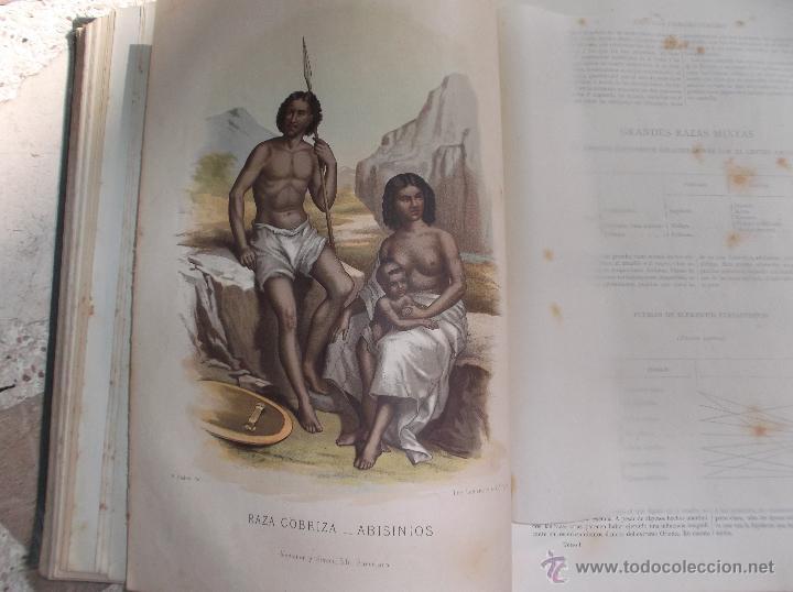 Libros antiguos: la creacion historia natural tomo-1 ,mamiferos,1872,montaner y simon editores, 34x26,880,paginas, - Foto 4 - 51009107
