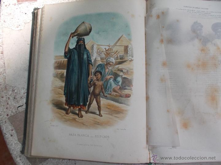 Libros antiguos: la creacion historia natural tomo-1 ,mamiferos,1872,montaner y simon editores, 34x26,880,paginas, - Foto 5 - 51009107
