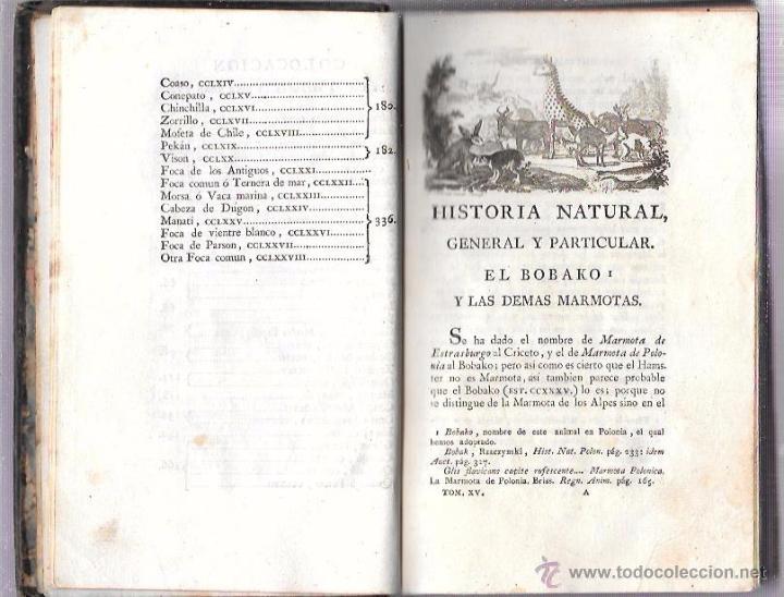 Libros antiguos: BUFFON. HISTORIA NATURAL, GENERAL Y PARTICULAR. TOMO XV. MADRID, 1798. ESCRITA EN FRANCÉS. - Foto 6 - 53893308