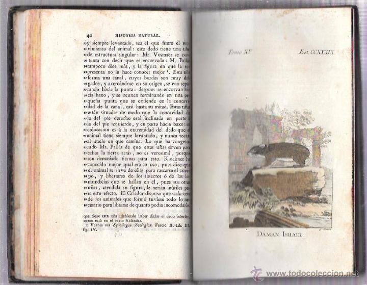 Libros antiguos: BUFFON. HISTORIA NATURAL, GENERAL Y PARTICULAR. TOMO XV. MADRID, 1798. ESCRITA EN FRANCÉS. - Foto 10 - 53893308