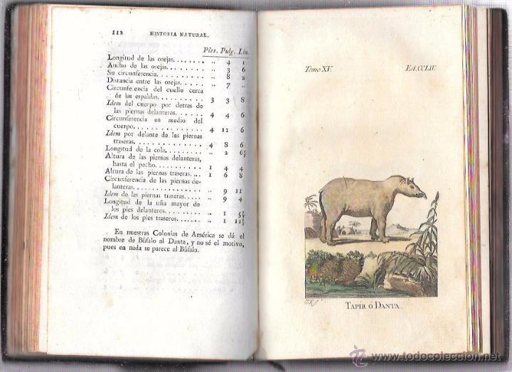 Libros antiguos: BUFFON. HISTORIA NATURAL, GENERAL Y PARTICULAR. TOMO XV. MADRID, 1798. ESCRITA EN FRANCÉS. - Foto 11 - 53893308