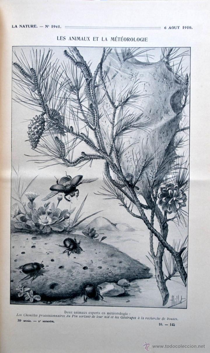 Libros antiguos: LA NATURE REVUE DES SCIENCES AÑO 1910 REVISTA DEDICADA A TODAS LAS CIENCIAS * GRABADOS - Foto 4 - 52067294