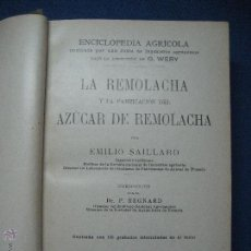 Libros antiguos: LA REMOLACHA Y LA FABRICACIÓN DEL AZÚCAR DE REMOLACHA. EMILIO SAILLARD. 1923. Lote 104472923