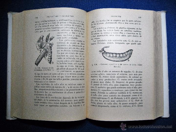 Libros antiguos: Horticultura y fruticultura. Rogelio Peña. 1934 - Foto 3 - 52146014