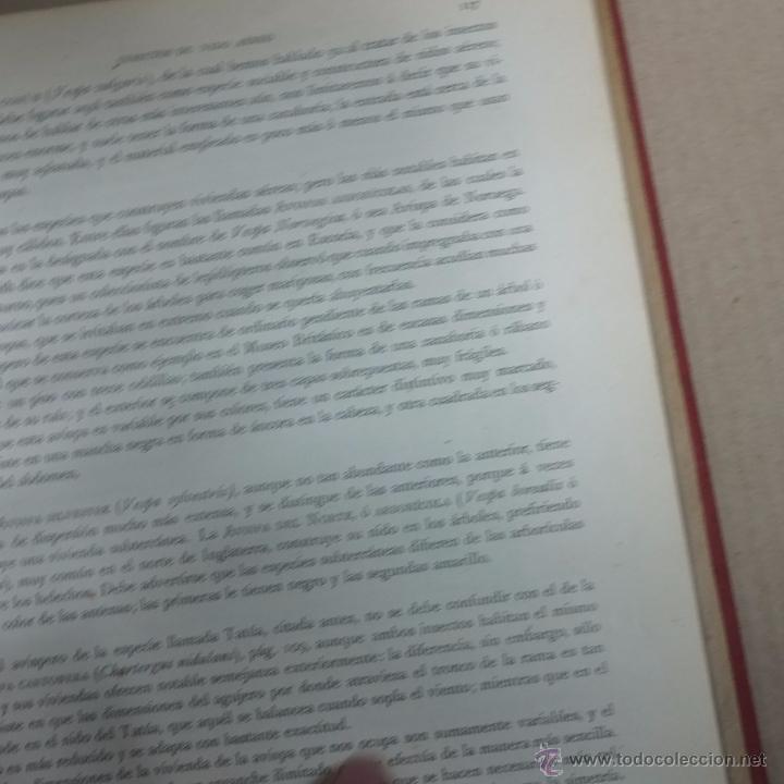 Libros antiguos: los precursores del arte y de la industria -j.g. wood -1886.550 pg - Foto 8 - 53051996