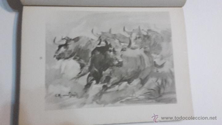 Libros antiguos: IMPRESIONES DEL NATURAL C. Ruano Llopis. - Foto 5 - 53358246