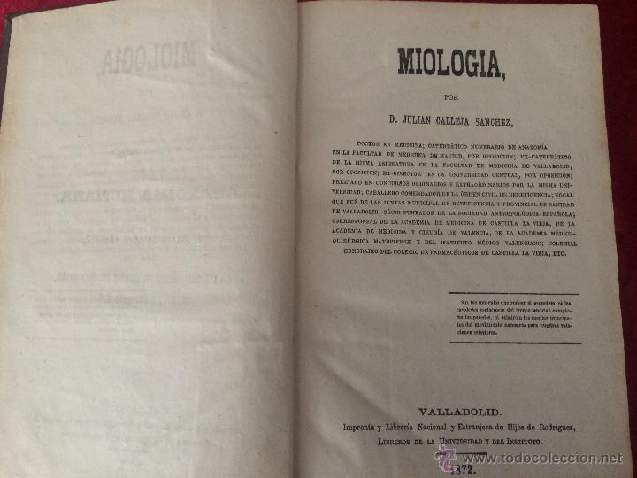 Libros antiguos: Julian Calleja.Tratado Anatomía Humana.Valladolid 1869. 4 tomos.99 láminas color.Miologia.Angiologia - Foto 8 - 53600312