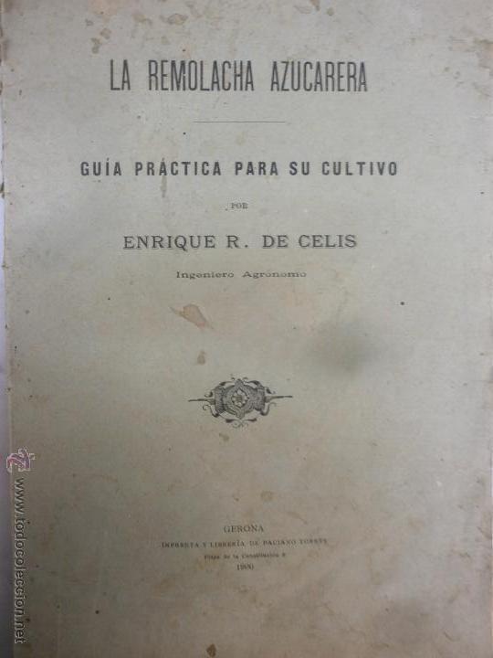 LIBRO - LA REMOLACHA AZUCARERA - GUÍA PRACTICA PARA EL CULTIVO - ENRIQUE R. DE CELIS - GERONA - 1900 (Libros Antiguos, Raros y Curiosos - Ciencias, Manuales y Oficios - Otros)