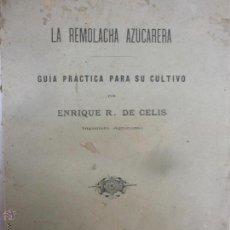 Libros antiguos: LIBRO - LA REMOLACHA AZUCARERA - GUÍA PRACTICA PARA EL CULTIVO - ENRIQUE R. DE CELIS - GERONA - 1900. Lote 53748814