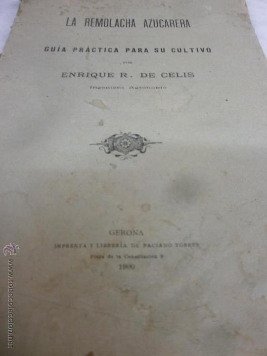 Libros antiguos: Libro - La Remolacha Azucarera - Guía practica para el cultivo - Enrique R. de Celis - Gerona - 1900 - Foto 2 - 53748814