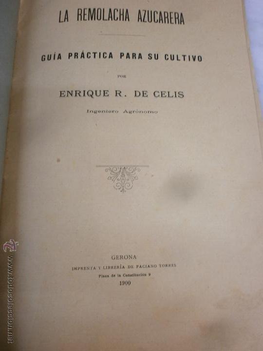 Libros antiguos: Libro - La Remolacha Azucarera - Guía practica para el cultivo - Enrique R. de Celis - Gerona - 1900 - Foto 3 - 53748814