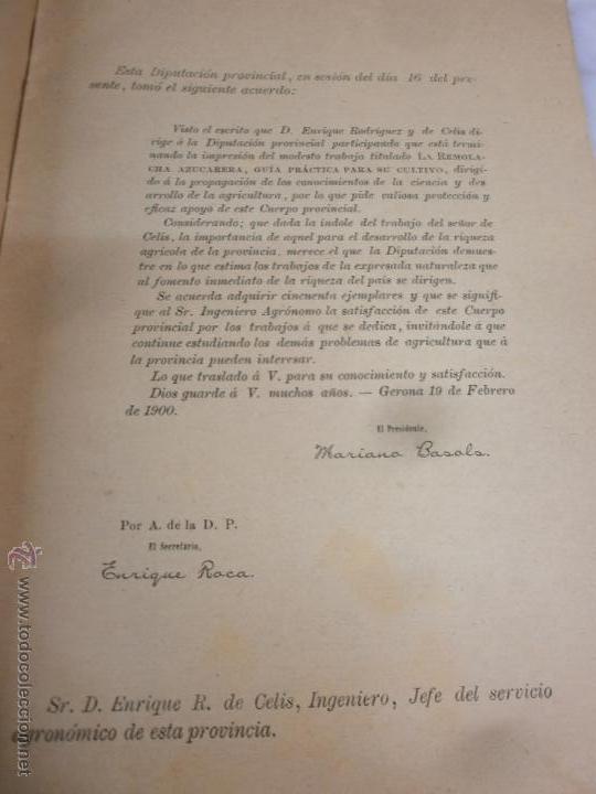 Libros antiguos: Libro - La Remolacha Azucarera - Guía practica para el cultivo - Enrique R. de Celis - Gerona - 1900 - Foto 4 - 53748814