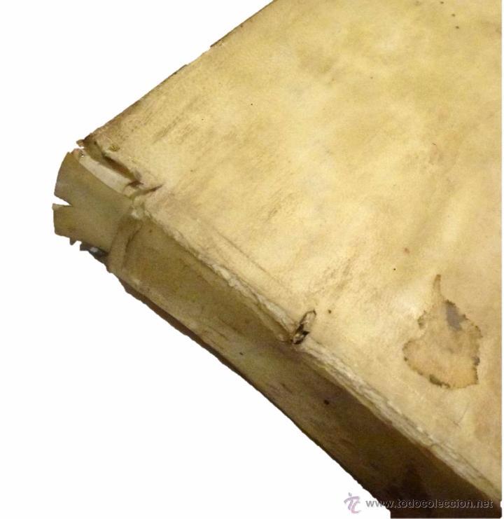 Libros antiguos: ESTII Guilielmi (ESTIUS), Annotationes in praecipua ac difficiliora sacrae scripturae loca-1.759 - Foto 4 - 53763309
