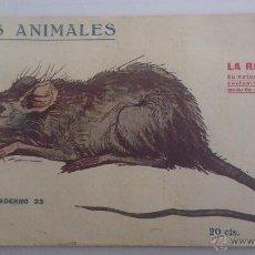Libri antichi: LOS ANIMALES, CUADERNO Nº 23 - LA RATA, IMPRENTA PRENSA POPULAR AÑO 1919. Lote 54025108