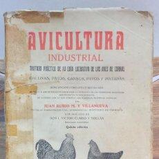 Libros antiguos - AVICULTURA INDUSTRIAL. POR JUAN RUBIO. LIBRERIA DE FRANCISCO PUIG, AÑO 1931 - 55649321