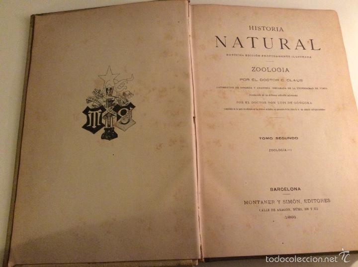 Libros antiguos: Historia Natural 1891 - Zoologia - Dr. C. Claus - Traducción Luis de Góngora - Montaner Simón editor - Foto 2 - 55951903
