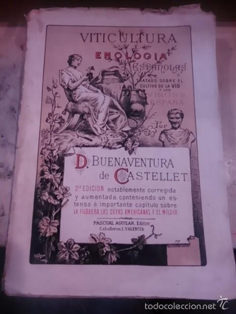 VITICULTURA Y ENOLOGÍA ESPAÑOLAS (VALENCIA, 1886) O TRATADO SOBRE EL CULTIVO DE LA VID Y LOS VINOS D (Libros Antiguos, Raros y Curiosos - Cocina y Gastronomía)