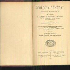 Libros antiguos: ZOOLOGÍA GENERAL. ESTUDIOS ELEMENTALES. ALBERTO DE SEGOVIA Y CORRALES . Lote 56124960