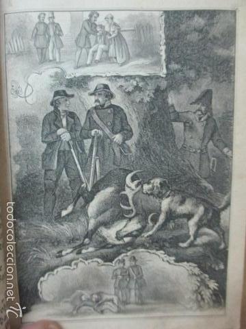 Libros antiguos: Wenn Man Nur Recht Gebult Hat! Franz Hoffman - 1865 - con ilustraciones B/N de caza (ver fotos) - Foto 9 - 56327051