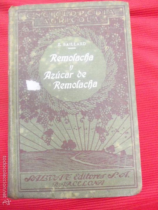 REMOLACHA Y AZUCAR DE REMOLACHA-E SAILLARD (Libros Antiguos, Raros y Curiosos - Cocina y Gastronomía)