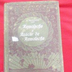 Libros antiguos: REMOLACHA Y AZUCAR DE REMOLACHA-E SAILLARD. Lote 56605321