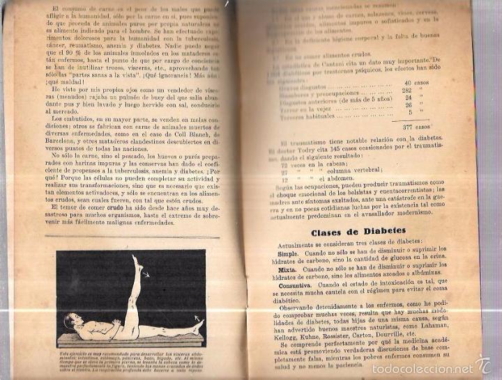 Libros antiguos: 12 COMIDAS PARA DIABÉTICOS. DR. V. L. FERRANDIZ. BARCELONA. 1932. ILUSTRADO. 32 PAGS. 24X13,4 CM. - Foto 4 - 56951990