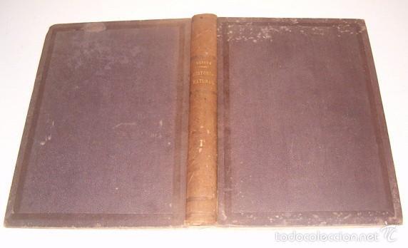 Libros antiguos: CONDE DE BUFFON. Historia Natural. General y Particular. NUEVE TOMOS EN OCHO VOLÚMENES. RM74791. - Foto 2 - 57055541