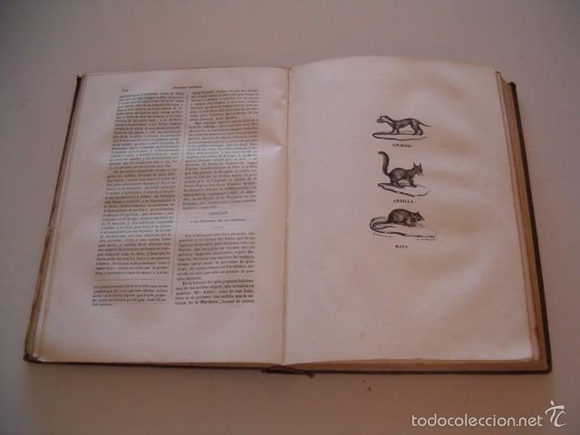 Libros antiguos: CONDE DE BUFFON. Historia Natural. General y Particular. NUEVE TOMOS EN OCHO VOLÚMENES. RM74791. - Foto 4 - 57055541