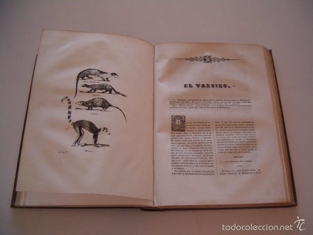 Libros antiguos: CONDE DE BUFFON. Historia Natural. General y Particular. NUEVE TOMOS EN OCHO VOLÚMENES. RM74791. - Foto 5 - 57055541