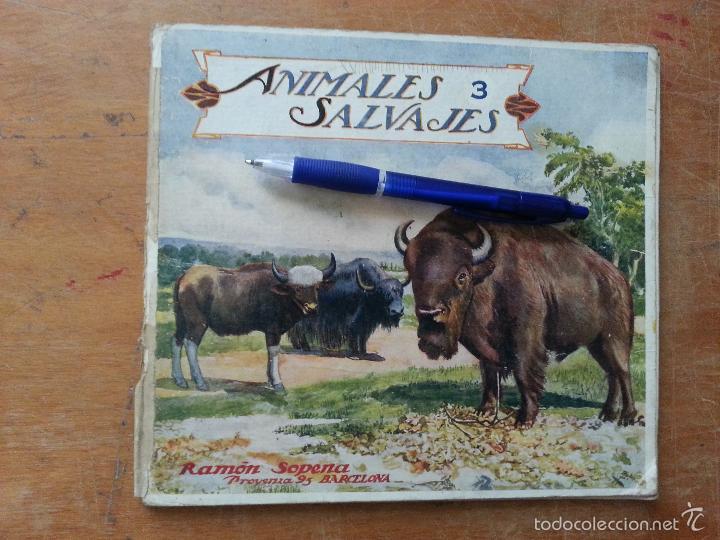 EL REINO ANIMAL PARA NIÑOS, ANIMALES SALVAJES , RAMON SOPENA . (Libros Antiguos, Raros y Curiosos - Literatura Infantil y Juvenil - Otros)