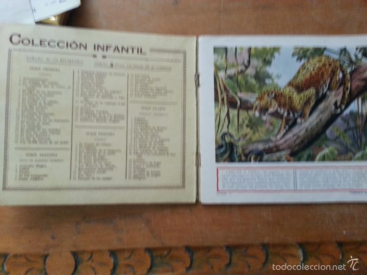 Libros antiguos: EL REINO ANIMAL PARA NIÑOS, ANIMALES SALVAJES , RAMON SOPENA . - Foto 3 - 57255719