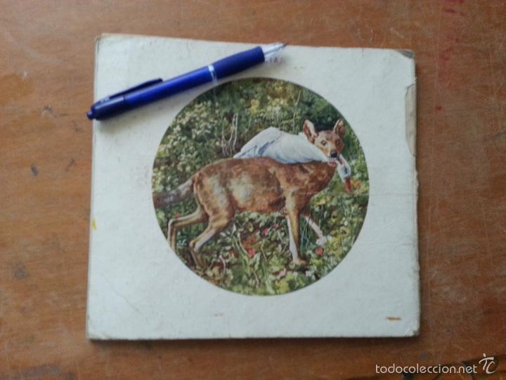 Libros antiguos: EL REINO ANIMAL PARA NIÑOS, ANIMALES SALVAJES , RAMON SOPENA . - Foto 4 - 57255719