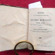 Libros antiguos: TRATADO DE LAS ENFERMEDADES PARTICULARES DE LOS GRANDES RUMIANTES. LAFORE.TRA G. DARDER. 1858 MADRID. Lote 57438438