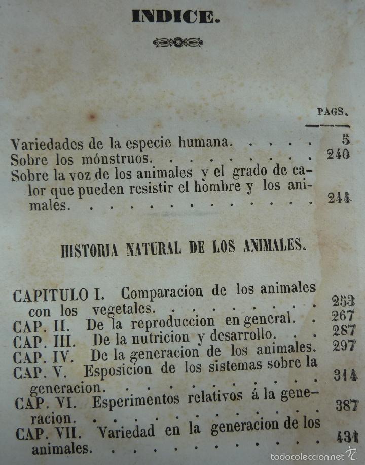 Libros antiguos: OBRAS COMPLETAS DE BUFFON - TOMO III - HISTORIA NATURAL DEL HOMBRE - MADRID 1847 - Foto 3 - 23874773