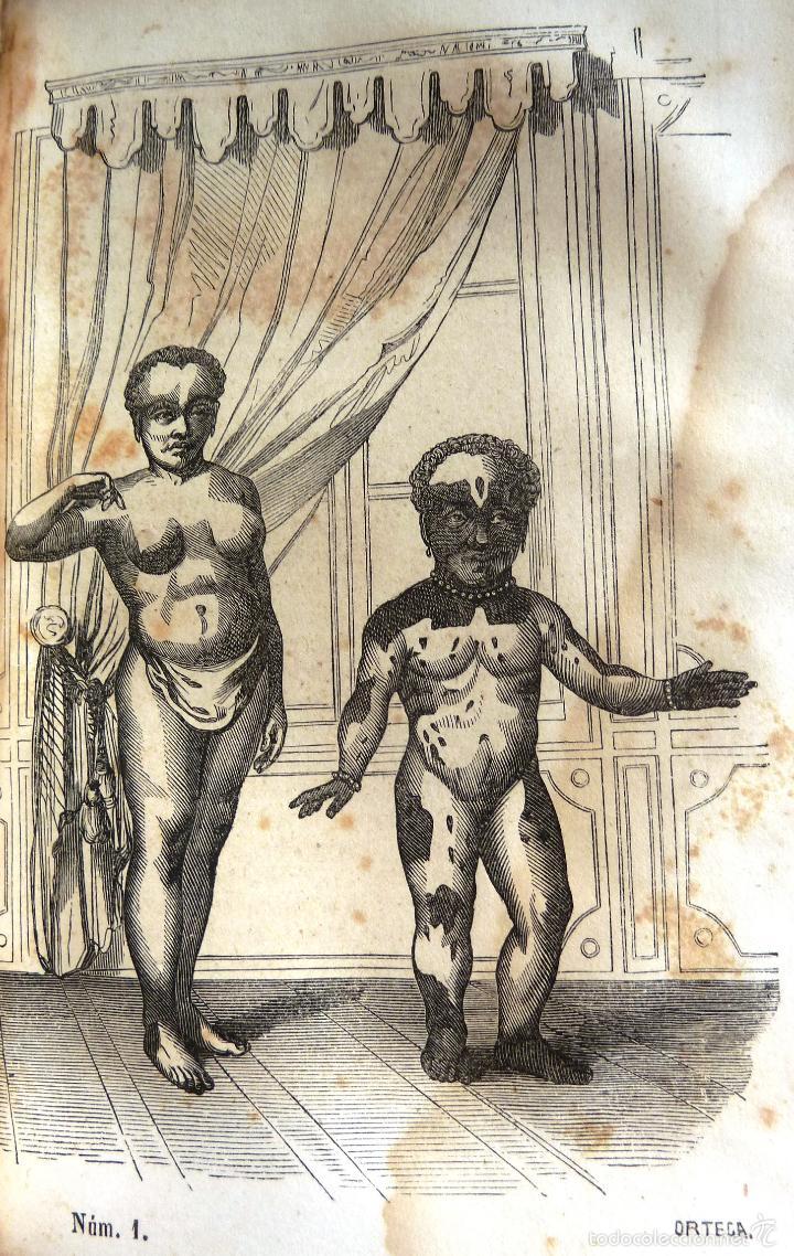 Libros antiguos: OBRAS COMPLETAS DE BUFFON - TOMO III - HISTORIA NATURAL DEL HOMBRE - MADRID 1847 - Foto 5 - 23874773