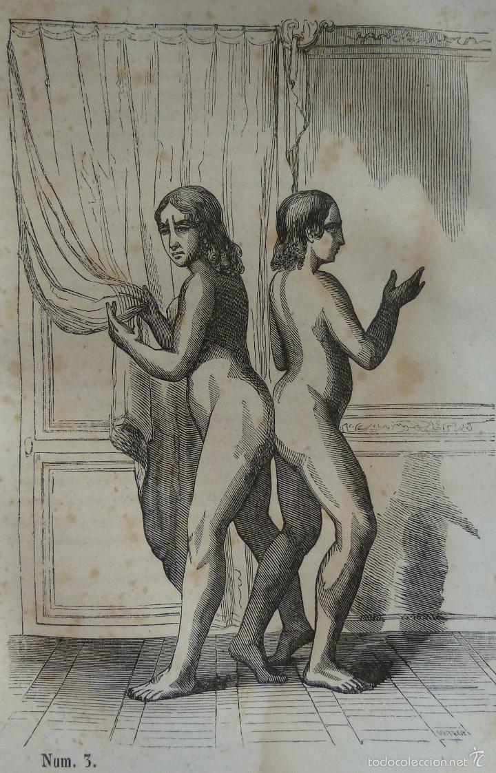 Libros antiguos: OBRAS COMPLETAS DE BUFFON - TOMO III - HISTORIA NATURAL DEL HOMBRE - MADRID 1847 - Foto 7 - 23874773
