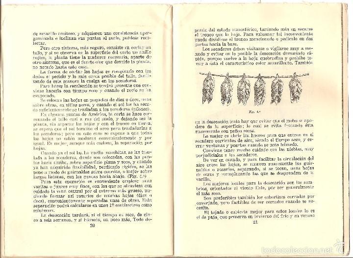 Libros antiguos: CATECISMO DEL AGRICULTOR Y DEL GANADERO Nº 27 - EL CULTIVO DEL TABACO POR RICARDO VÁZQUEZ - Foto 3 - 57988810