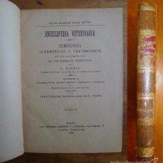 Libros antiguos: CADÉAC, C. SEMIOLOGÍA : DIAGNÓSTICO Y TRATAMIENTO DE LAS ENFERMEDADES DE LOS ANIMALES... TOMO I. Lote 59808776