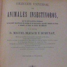 Libros antiguos: ANTIGUO LIBRO ANIMALES INSECTÍVOROS M. BLEACH Y BURUNAT EDICIÓN AÑO 1892 ILUSTRADO GRABADOS BE. Lote 61643404