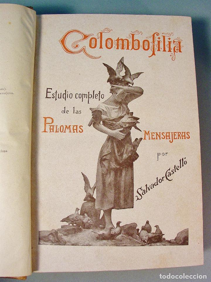 Libros antiguos: COLOMBOFILIA. ESTUDIO COMPLETO DE LAS PALOMAS MENSAJERAS. SALVADOR CASTELLÓ. 1906. BARCELONA - Foto 3 - 61740604