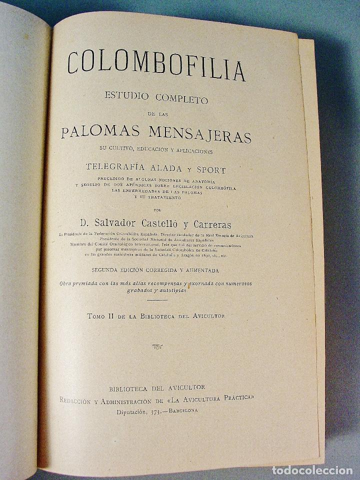 Libros antiguos: COLOMBOFILIA. ESTUDIO COMPLETO DE LAS PALOMAS MENSAJERAS. SALVADOR CASTELLÓ. 1906. BARCELONA - Foto 4 - 61740604