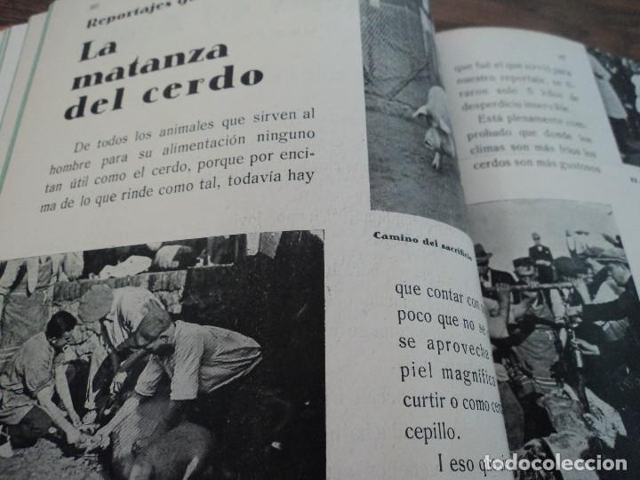 Libros antiguos: revistas recetas de cocina menage encuadernadas no orden correlativo 1932/34 - Foto 8 - 62066160