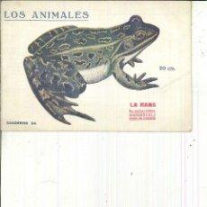 Libros antiguos: LA RANA. SU NATURALEZA, COSTUMBRES Y MODO DE CAZARLA.. Lote 62948436
