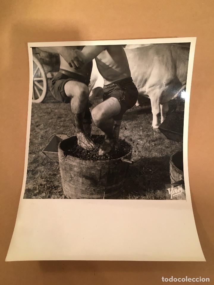 Libros antiguos: FOTOGRAFIA ANTIGUA - YAN - TOULOUSE - VENDIMIA - BARRICAS - VINO - VINOS - UVAS - ENOLOGIA - Foto 11 - 65312199