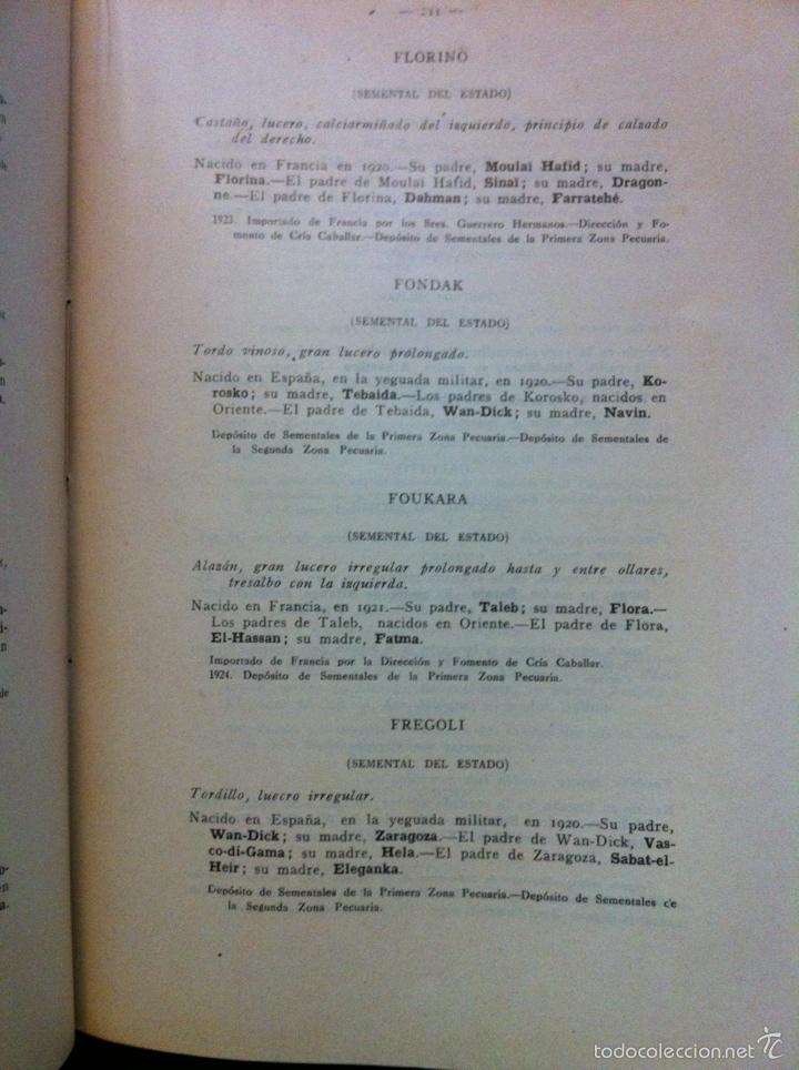 Libros antiguos: Registro Matricula de caballos de pura sangre Tomo XXI 1924 y 1925 (1927) - Foto 2 - 67016583