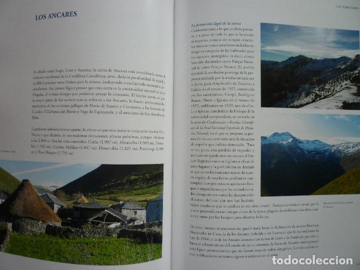 Libros antiguos: SALIME ARTE Y VIDA (ASTURIAS) - VICTOR M. VAZQUEZ - JOAQUIN VAQUERO TURCIOS - Foto 6 - 50007261
