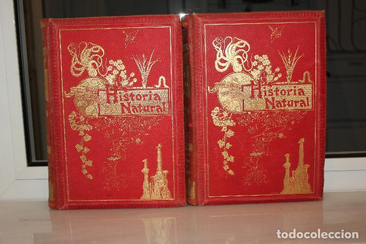 HISTORIA NATURAL POR ODON DE BUEN. 2 TOMOS. EDITORIAL MANUEL SOLER 1897. OBRA MUY ILUSTRADA.UNA JOYA (Libros Antiguos, Raros y Curiosos - Ciencias, Manuales y Oficios - Otros)