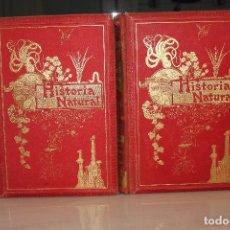 Libros antiguos: HISTORIA NATURAL POR ODON DE BUEN. 2 TOMOS. EDITORIAL MANUEL SOLER 1897. OBRA MUY ILUSTRADA.UNA JOYA. Lote 69373301