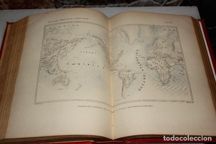 Libros antiguos: HISTORIA NATURAL POR ODON DE BUEN. 2 TOMOS. EDITORIAL MANUEL SOLER 1897. OBRA MUY ILUSTRADA.UNA JOYA - Foto 4 - 69373301