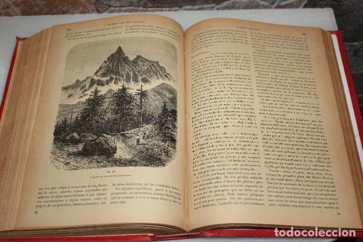 Libros antiguos: HISTORIA NATURAL POR ODON DE BUEN. 2 TOMOS. EDITORIAL MANUEL SOLER 1897. OBRA MUY ILUSTRADA.UNA JOYA - Foto 5 - 69373301